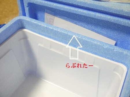 P1290300(1).jpg