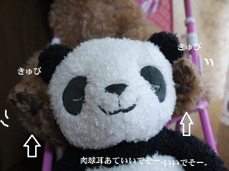 P1290534(1).jpg