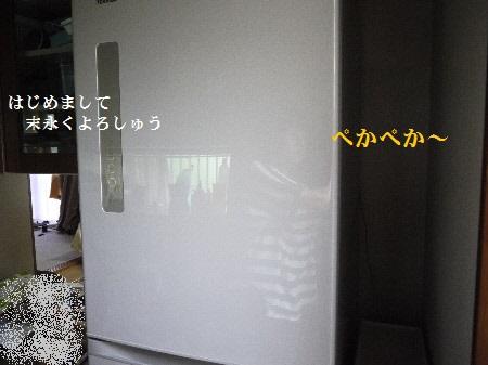 P1290649(1).jpg