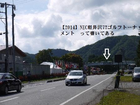 P1310094(1).jpg