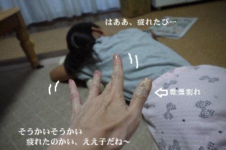 P1310743(1).jpg