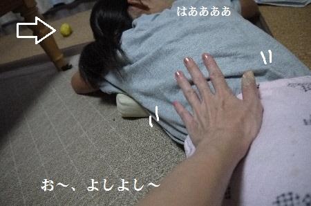 P1310744(1).jpg