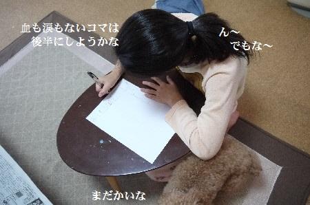 P1310770(1).jpg