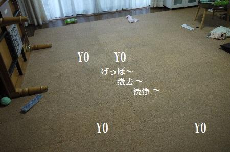 P1310803(1).jpg