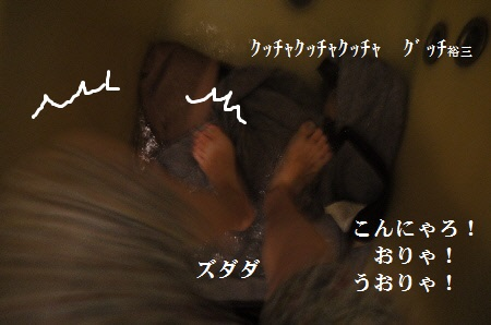 P1310816(1).jpg