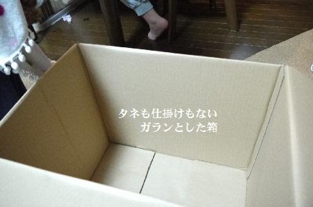 P1320026(1).jpg