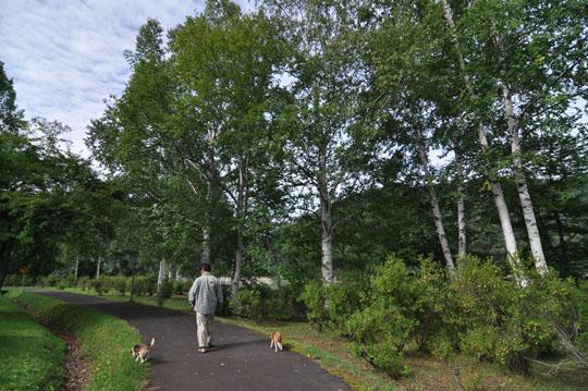 311岩尾内湖散歩2