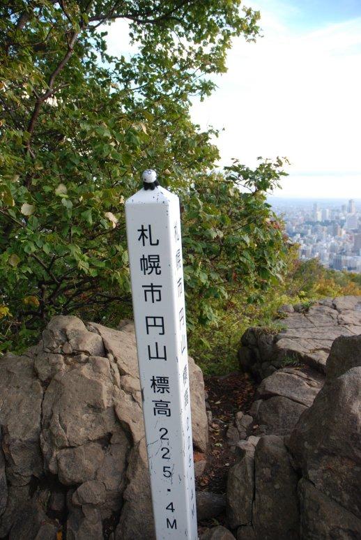 maruyama1-10.jpg