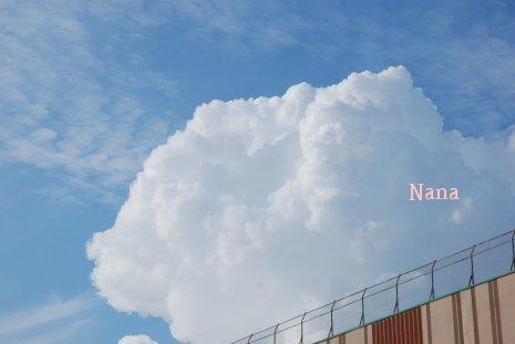 sky1-11.jpg