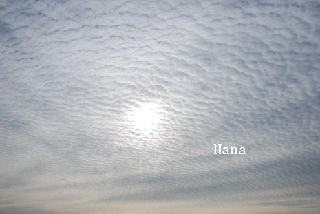 sky1-20.jpg