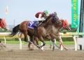 レース 2