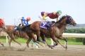 レース 3