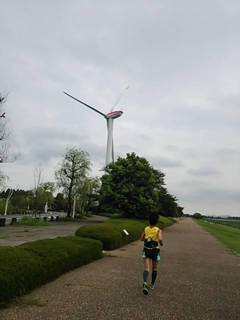 琵琶湖ラン風車