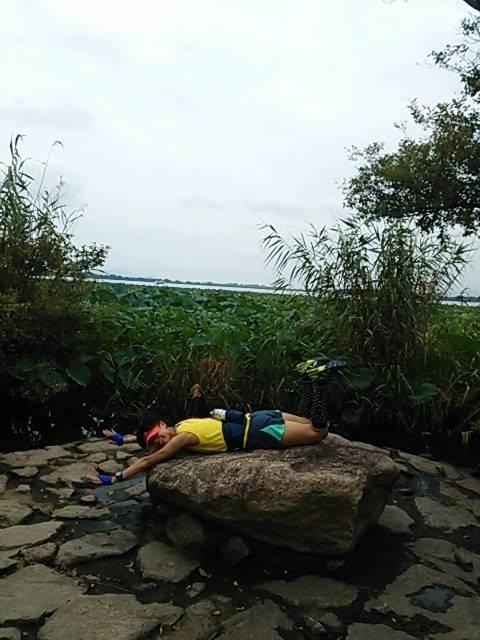 琵琶湖ラン蓮