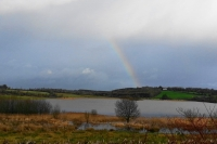 rainbow0214