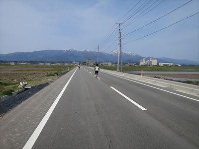 140427佐渡トキマラソン097