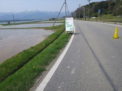 140427佐渡トキマラソン107