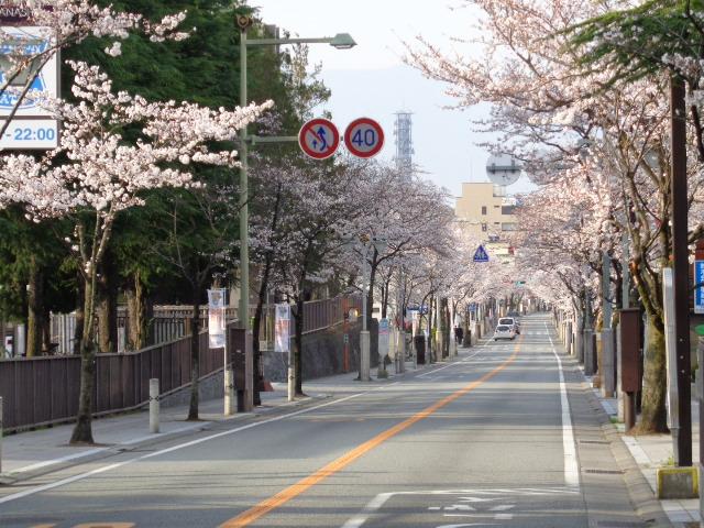 20140402武田通り