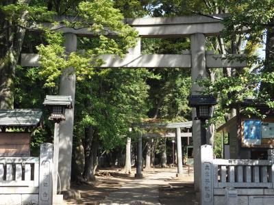 東京 八雲氷川神社