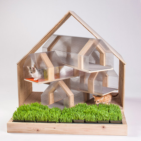 architects-for-animals-cat-shelters-fixnation-designboom-04