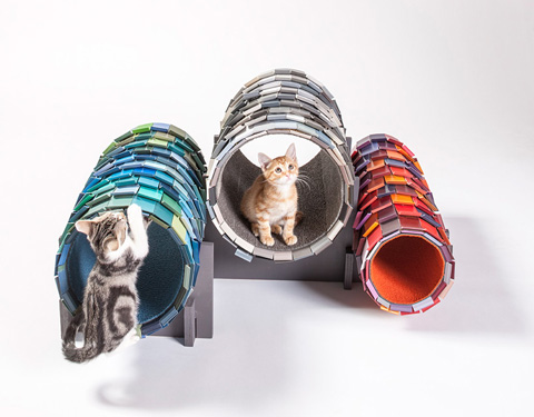architects-for-animals-cat-shelters-fixnation-designboom-05