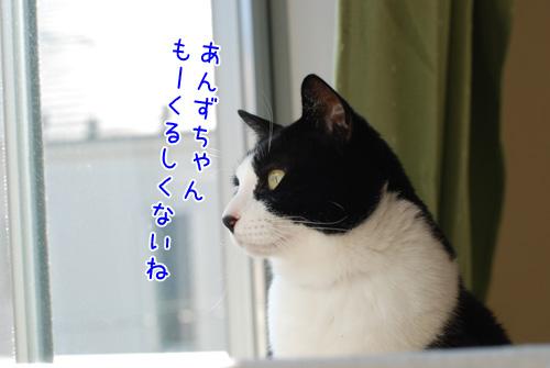 DSC_2618_2.jpg