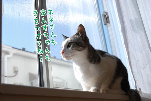 DSC_2820_2.jpg