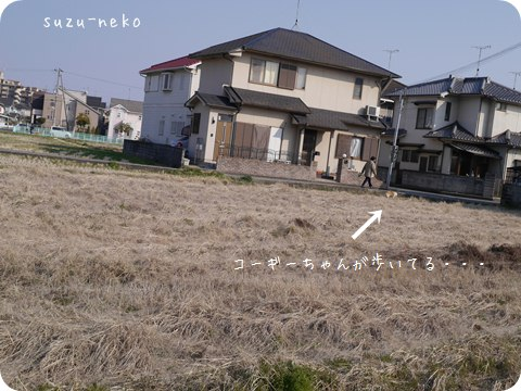 20140316-001.jpg