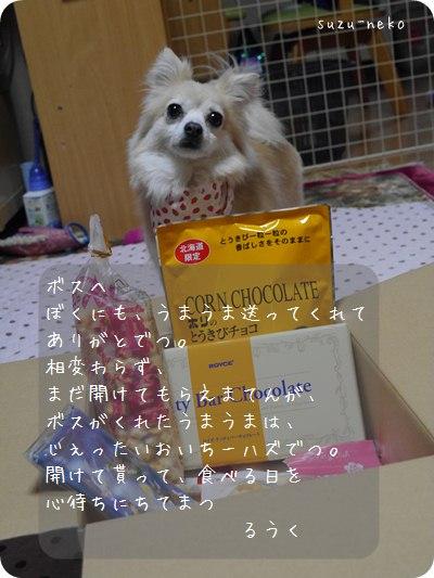 20140328-006.jpg