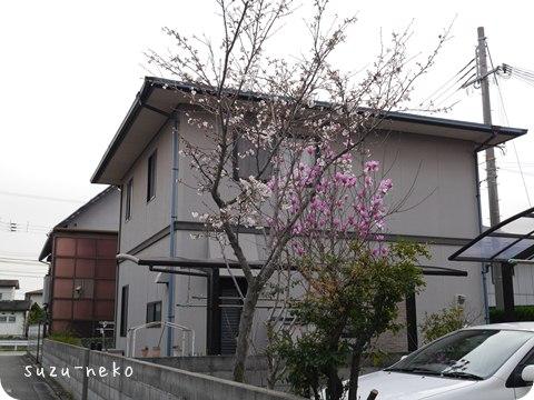 20140331-007.jpg