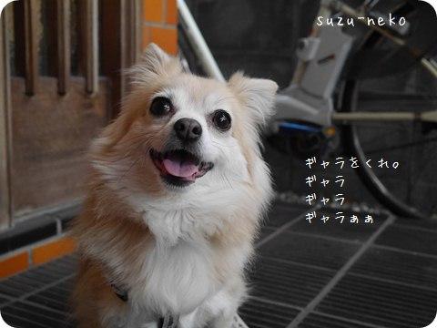 20140410-003.jpg