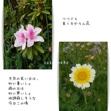 20140423-004.jpg