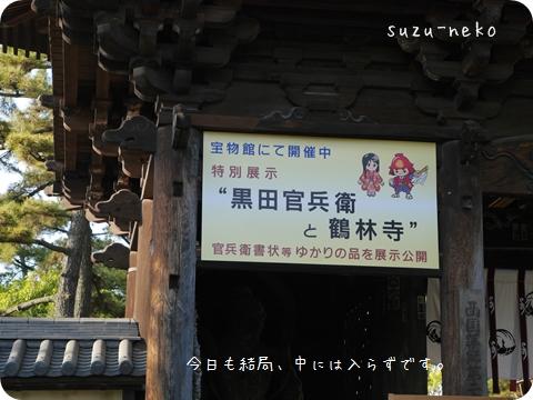 20140511-008.jpg