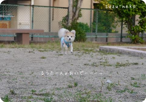 20140528-003.jpg