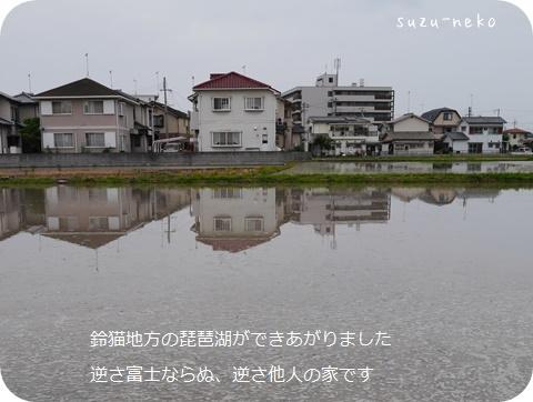 20140610-004.jpg