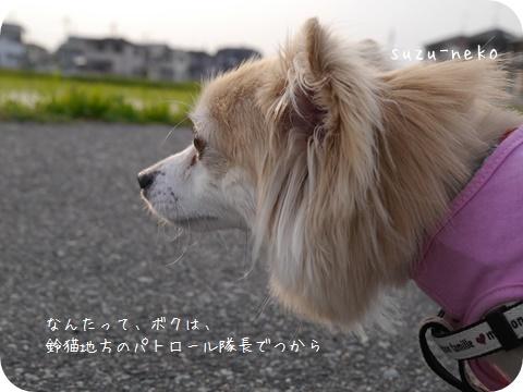 20140615-003.jpg