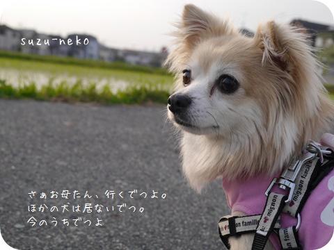 20140615-004.jpg