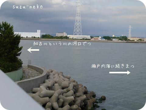 20140628-004.jpg