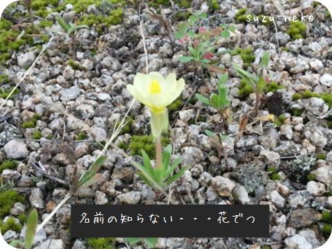 20140704-002.jpg