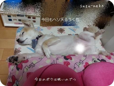 20140714-004.jpg