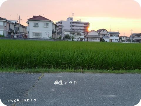 20140726-001.jpg
