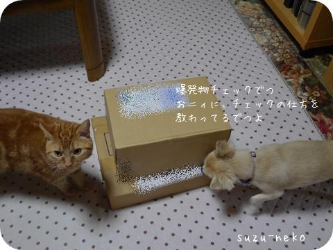 20140911-003.jpg