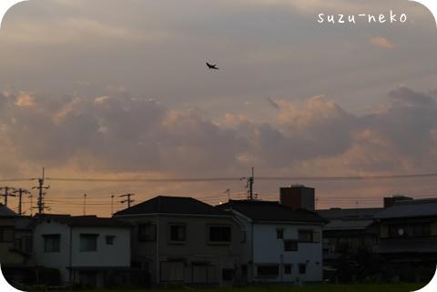 20140911-004.jpg