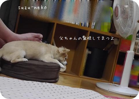 20140913-002.jpg