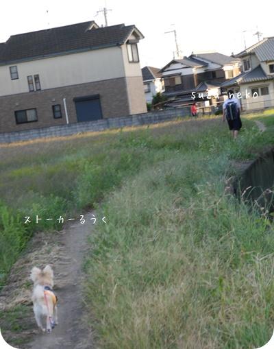 20140927-004.jpg