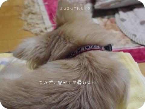 20141013-002.jpg