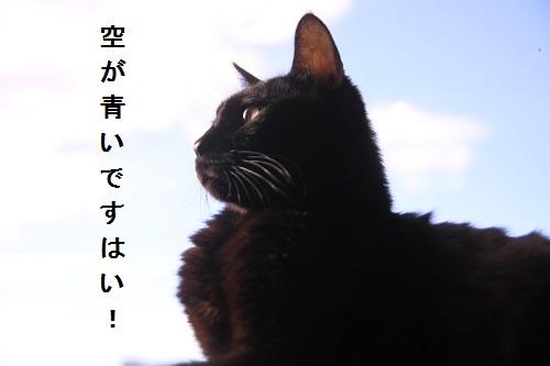 しろう店長20141009-02