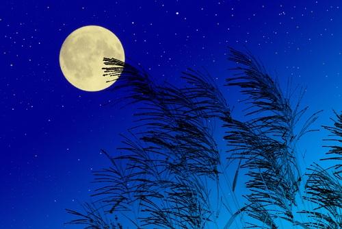 お月見0910