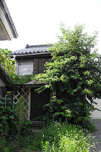 中津賀の蔵-01