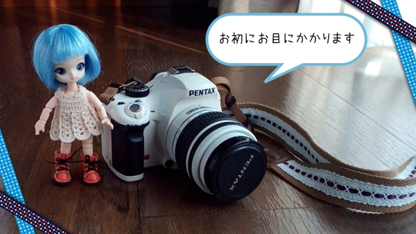 dal_camera2.jpg